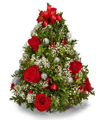 Christmas Holiday Flowers